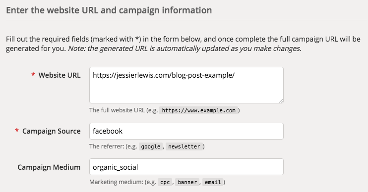 Screenshot example of Google URL Campaign Builder